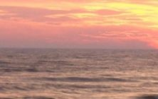 Gulf_Shores_Featured_Image