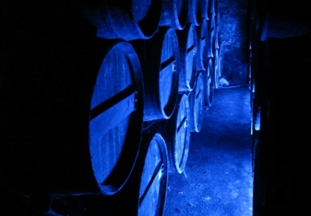 Cognac storage cellars in the Chateau de Cognac in Cognac, France
